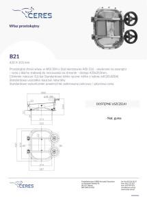 b21-215x300