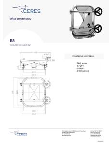 B8-226x300