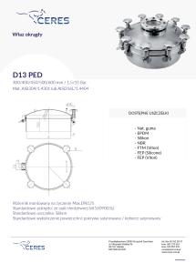 D13--01-215x300